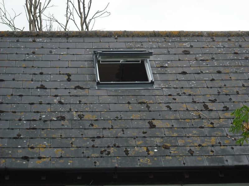 New Velux roof light